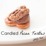 Candied Pecan Turtles