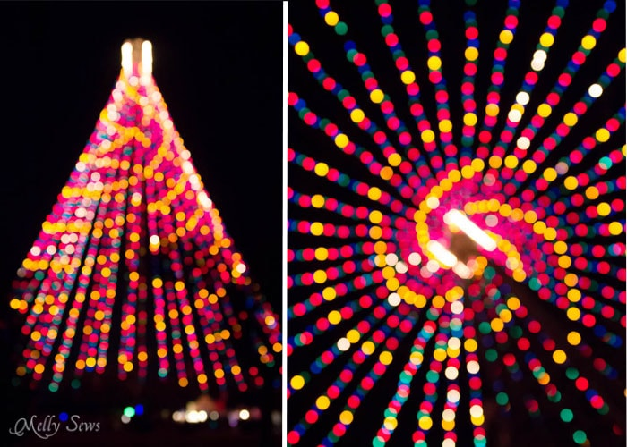 Zilker Christmas Tree - Austin Notebook - What to wear and see at the Zilker Trail of Lights - Melly Sews