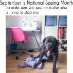 National Sewing Month Giveaway