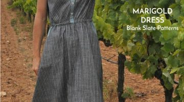 Striped Marigold with Doctora Botones