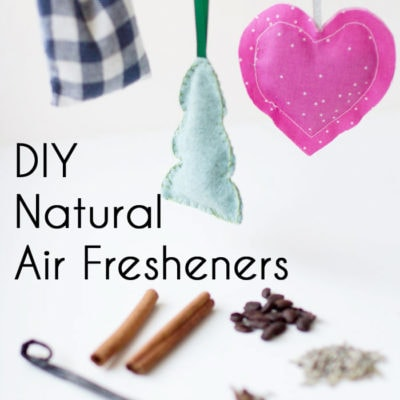 DIY Natural Air Fresheners